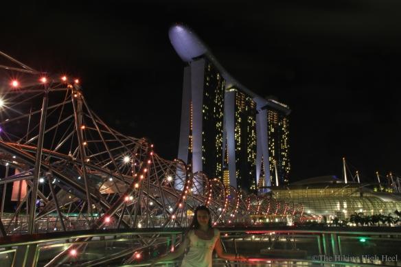 SingaporeFineCityPartI_2