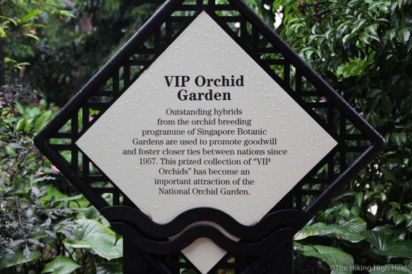 OrchidGarden-4